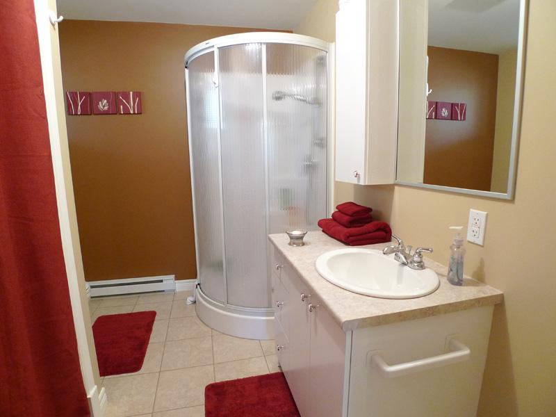 salle-bain-sous-sol-douche