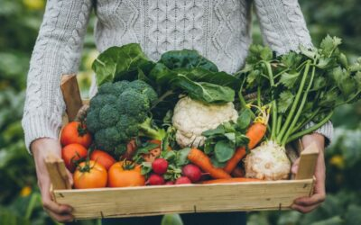 HOW TO GROW FRUITS AND VEGETABLES WITH STYLE AT HOME.